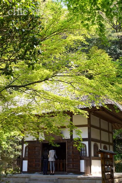 北鎌倉-429