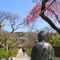 写真: 北鎌倉-478