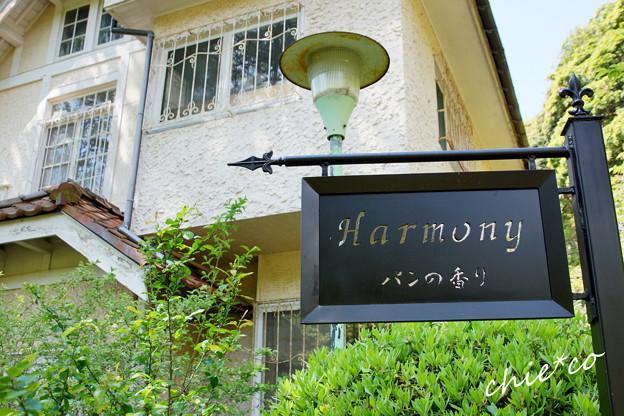 写真: 鎌倉-254