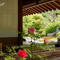 写真: 鎌倉-283