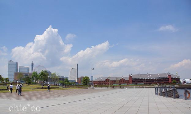 写真: Yokohama-358