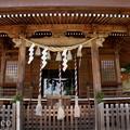 写真: 瀬戸神社~山あじさい-443