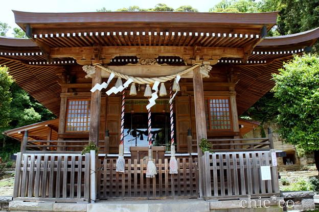 瀬戸神社~山あじさい-445