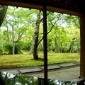 写真: 箱根美術館-176