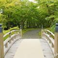 写真: 箱根美術館-183