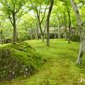 写真: 箱根美術館-184