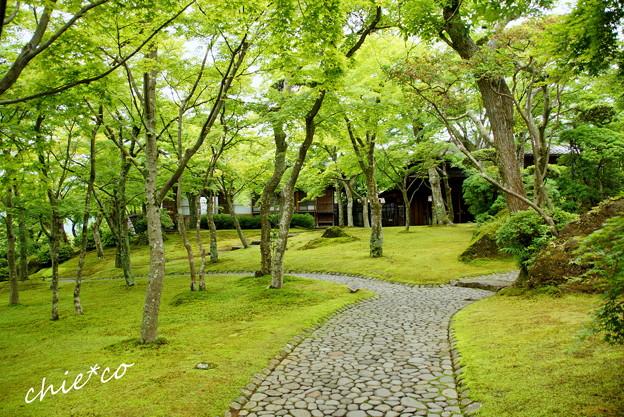 箱根美術館-192