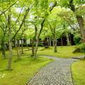 写真: 箱根美術館-192