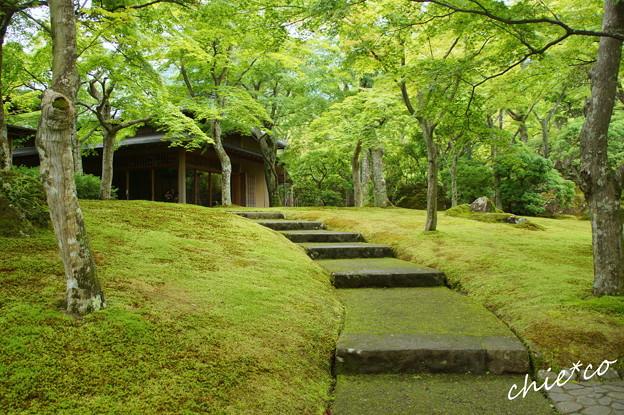 箱根美術館-193