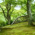 写真: 箱根美術館-197