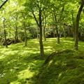 写真: 箱根美術館-212