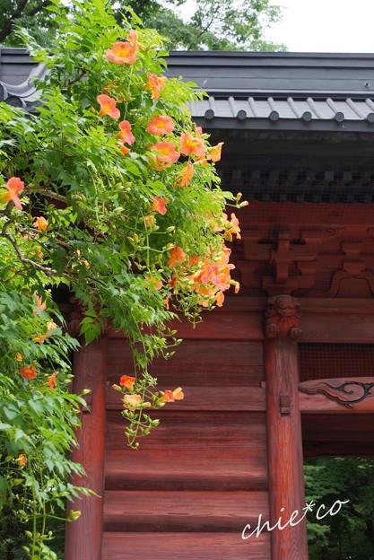 鎌倉-139