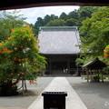 写真: 鎌倉-140