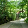 写真: 鎌倉-158