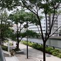 写真: Yokohama-075