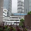 写真: Yokohama-091
