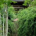 写真: 鎌倉-511