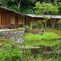 写真: 鎌倉-549