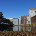 写真: Tokyo-138