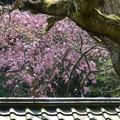 写真: 鎌倉-448