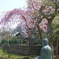写真: 鎌倉-454