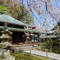 写真: 鎌倉-441
