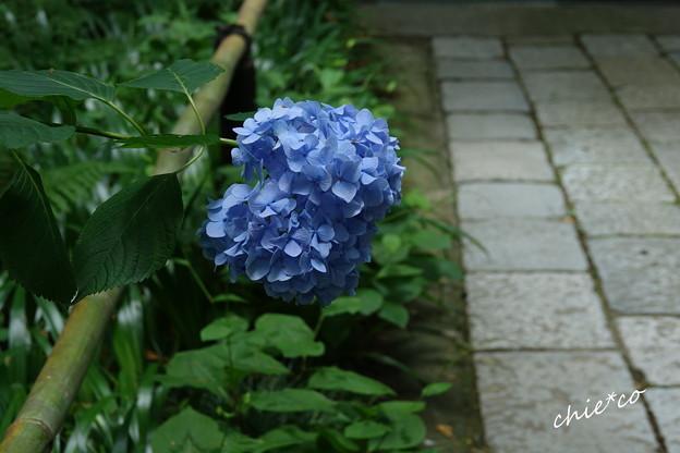 鎌倉-094