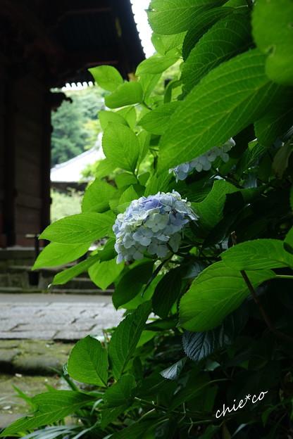 鎌倉-098