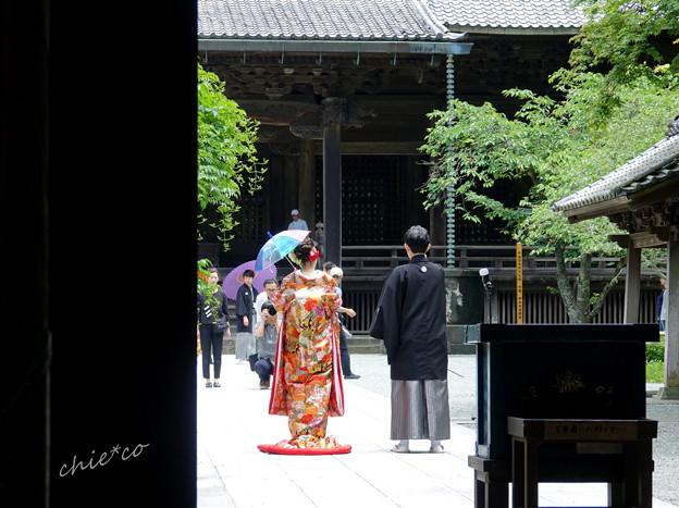 鎌倉-102
