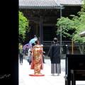 写真: 鎌倉-102