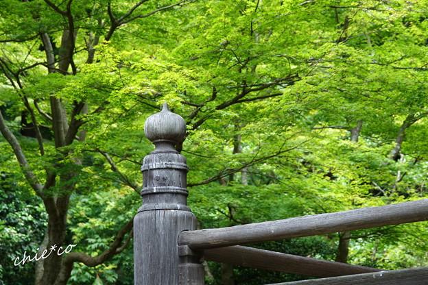 鎌倉-103