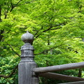 写真: 鎌倉-103