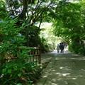 写真: 鎌倉-109
