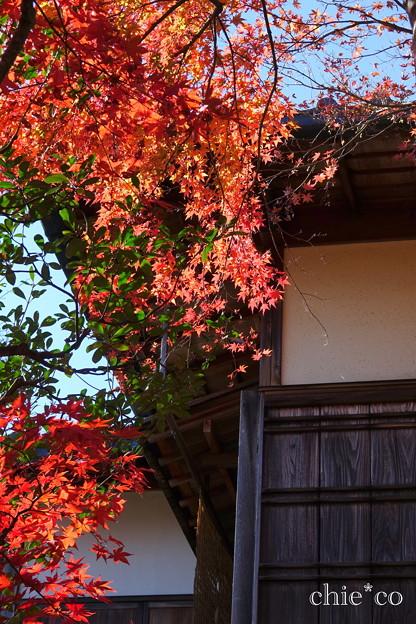 箱根美術館-162