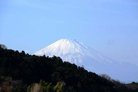 富士山 北鎌倉円覚寺にて・・・