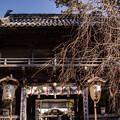 Photos: 第十九番札所立江寺