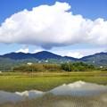 写真: 雨上がりの山里2