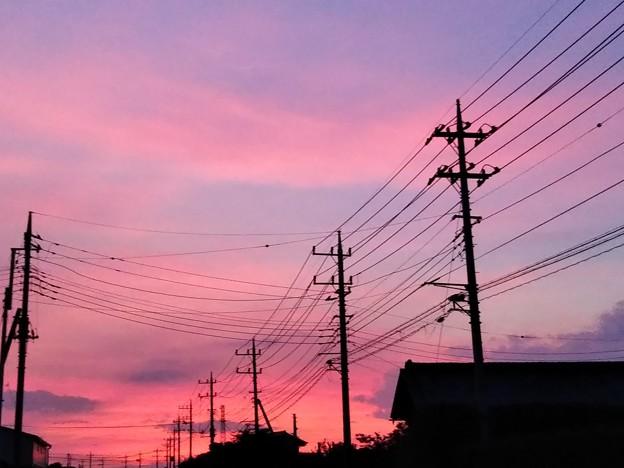 夕焼けと電線