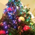 大きなツリー
