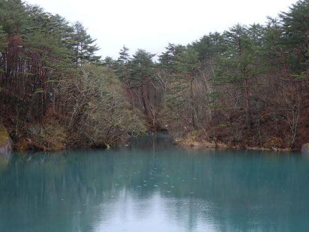雨の毘沙門沼