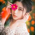 Photos: 祈り花