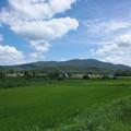 写真: 八幡高原の夏風景