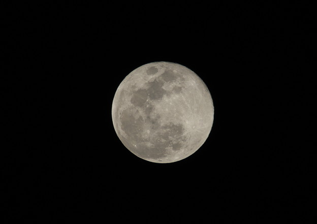 Photos: 今日(3月2日)の月