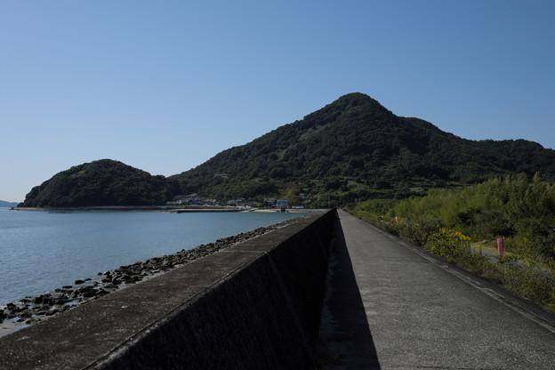 海辺の風景