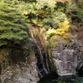 写真: 秋の三段峡(姉妹滝)