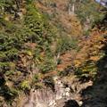 秋の三段峡にて(石樋)