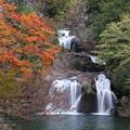 Photos: 彩る三ッ滝(三段峡にて)