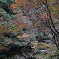 Photos: 秋の渓谷