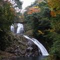 Photos: 秋染まる八重滝
