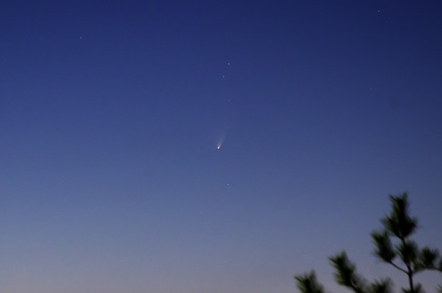 Photos: 13年3月21日 パンスターズ彗星(C2011 L4)